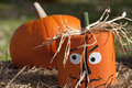 Halloween Wooden Pumpkin Head Royalty Free Stock Photography