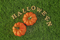 Hallowen and pumpkins on grass background nature concept and wood idea happy Royalty Free Stock Photo