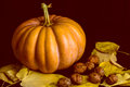 Haloween pumpkin with leafs and hazelnuts Royalty Free Stock Photo