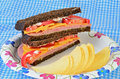 Ham and cheese on pumpernickel sandwich bread with sliced tomatoes mayonnaise served paper plate with potato chips Stock Photo