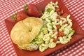 Ham and Cheese Sandwich with Macaroni Salad Stock Image