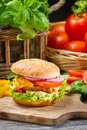 Hamburger with chicken tomato and vegetables on old wooden table Royalty Free Stock Photography