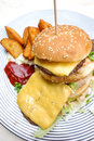 Hamburger de fromage Images stock