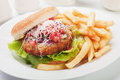 Hamburger with grated cheese classic tomato and served french fries Stock Images