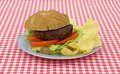 Hamburger with lettuce tomato chips Stock Image