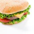 Hamburger saporito Fotografia Stock