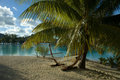 Hammock on beach Royalty Free Stock Photo