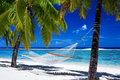 Hammock entre palmeiras na praia tropical Imagens de Stock