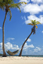 Hammock between palm trees on the beach hamock two caribbean sea Stock Photos