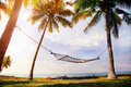 Hammock on palm trees hanging the at ocean background Stock Photo