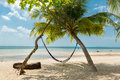 Hammock and palms on the beach resort at Koh Samui Island Thai Royalty Free Stock Photo