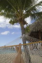 Hammock in paradise Royalty Free Stock Image