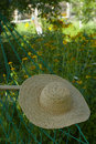 Hammock and straw hat in the garden on a summer da Royalty Free Stock Image