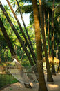 Hammock under coconut palm trees in Goa Stock Photos
