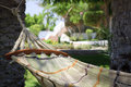 Hammock under palm trees. Royalty Free Stock Photo