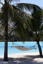 A hammock under the trees Overlooking the beach, Royalty Free Stock Photo