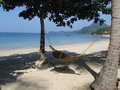 Hammock on white sandy beach Royalty Free Stock Images