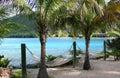 Hammocks under palm trees Royalty Free Stock Photo
