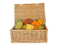 Hamper of Autumn Squash Royalty Free Stock Photography