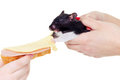 Hamster likes sandwich funny image of eating Royalty Free Stock Photography