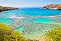 Hanauma bay oahu hawaii snorkeling paradise Royalty Free Stock Photo