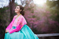 Hanbok the traditional korean dress and beautiful asian girl wi with sakura Stock Image