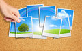 Hand Add Tree Image Into A Gro...