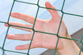 Hand anf fence Royalty Free Stock Photo