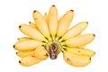Hand of bananas Royalty Free Stock Photo