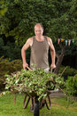 Hand barrow the gardener is carrying some garden waste with a in his garden Royalty Free Stock Photos