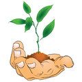 Hand with a branch mans vector illustration Stock Photo