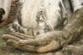 Hand of buddhism image