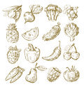 Hand draw fruit and vegetable vector icon set on white Royalty Free Stock Photo
