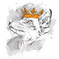 Hand draw Image Portrait fox  in the crown. African / indian / totem / tattoo design. Use for print, posters, t-shirts. Hand draw Royalty Free Stock Photo
