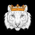Hand draw Image Portrait tiger in the crown. Use for print, posters, t-shirts. Hand draw vector illustration