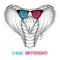 Hand draw king cobra in glasses vector illustration Stock Photos
