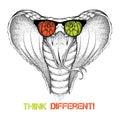 Hand draw king cobra in glasses vector illustration Stock Photo