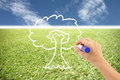 Hand is drawing a tree on the grass and blue sky empty space to be able to plant trees Stock Image