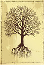 Hand drawing tree with roots