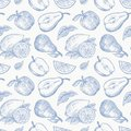 Hand Drawn Apples Pears and Lemons Harvest Vector Seamless Background Pattern. Fruits and Leaves Sketches Card or Cover