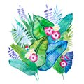 Hand-drawn aquarelle composition of tropical leaves and flowers isolated on white background
