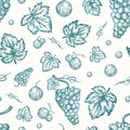 Hand Drawn Autumn Grapes Harvest Vector Seamless Background Pattern. Grape Berries, Brunch and Leaves Sketches Card or