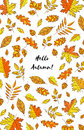 Hand drawn autumn leaves with text Hello autumn. Background with Fall leaves. Forest design elements. Royalty Free Stock Photo
