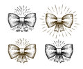 Hand drawn bow. Holiday symbol. Bowknot sketch, vector illustration