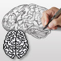 Hand drawn brain and pixel brain icon Royalty Free Stock Photo