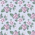 Hand drawn briar vintage seamless pattern gentle floral with dog roses Stock Photo