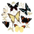 Hand drawn butterflies set. Vector illustration