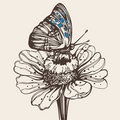 Hand drawn butterfly on a flower Royalty Free Stock Photo