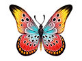 Hand drawn butterfly on white background drawing with colored pencils Royalty Free Stock Photography