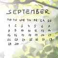Hand drawn calendar for the month of september over a faded spring background with flare effect fresh green beech tree leaves Royalty Free Stock Photography
